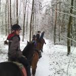 Zimowe przejażdżki leśne :)
