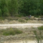 paintball (28)